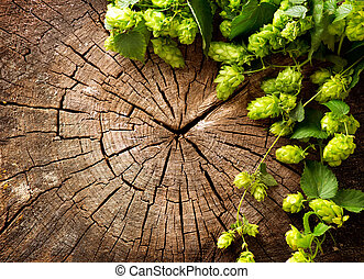 Fresh, green hop branch on cracked wooden background....