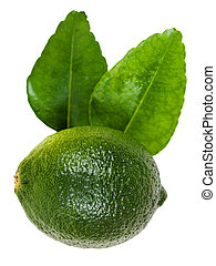 green kaffir lime with leaves isolated on white