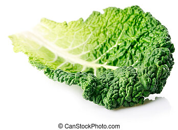 fresh green leaf cabbage isolated on white