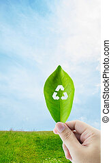 Fresh green leaf in hand with recycle symbol on nature background