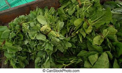 Fresh green-leaf vegetables, Dal Lake, Srinagar - Extreme...
