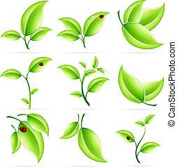 Fresh Green Leaves Icon Set