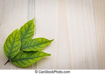 Fresh green leaves on the wooden floor