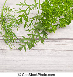 Fresh green leaves on white wooden background