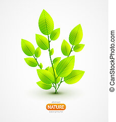 Fresh green leaves vector abstract background