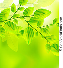 Fresh green leaves vector abstract background - Nature...