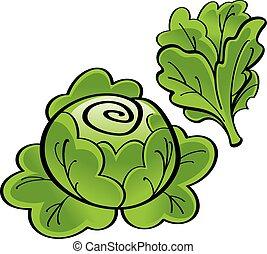 Lettuce - Fresh green Lettuce