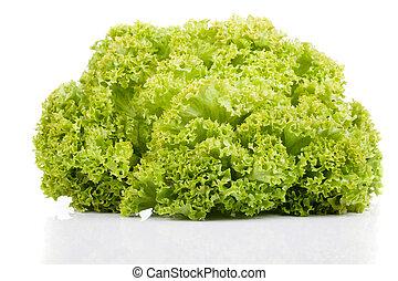 Fresh green Lettuce salad, isolated on white background