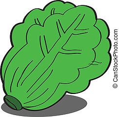 Fresh green Lettuce EPS10