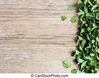 Fresh green mint as a border