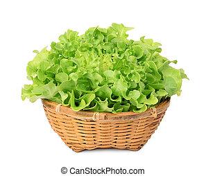 fresh green oak lettuce in the bamboo basket isolated on white background