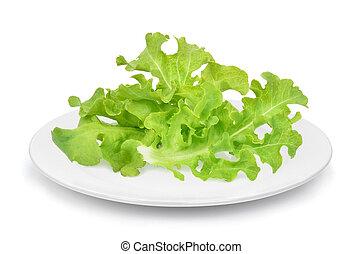fresh green oak lettuce in the white plate isolated on white background
