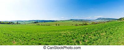 Fresh green panorama during the spring