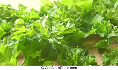 Fresh green parsley leaves on wooden cutting board close up dolly shot