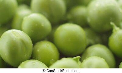 Fresh green peas rotate. Close up
