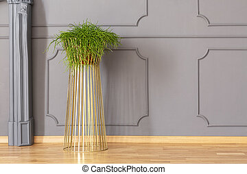 Fresh green potted plant placed on metal gold stand in grey...