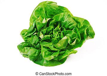 fresh green salad on white background