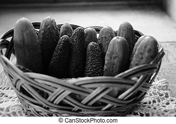 Fresh green small cucumbers in a basket