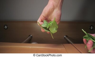 Fresh green spinach leaves dropped on food, viewed from ...