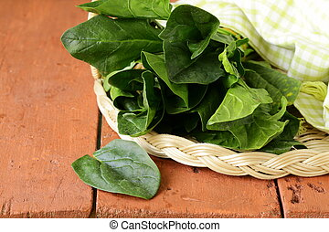 fresh green spinach leaves