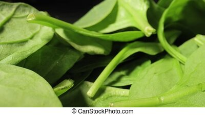 Fresh green spinach leaves on a plate macro closeup camera movement with probe lens