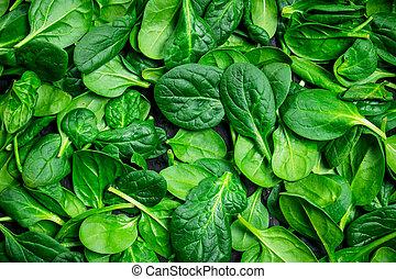 Fresh green spinach.