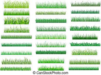 Fresh green spring grass borders - Large set of fresh green ...
