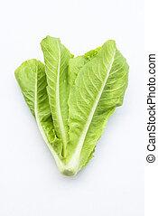 fresh green vegetable