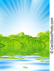 Fresh greenery with rays of sun rising over blue sky.