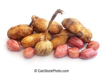 Fresh groundnuts