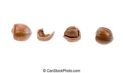 hazelnuts - fresh hazelnuts isolated on a white background