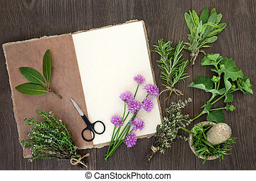 Fresh Herbs for Drying
