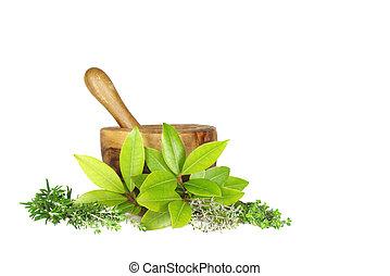 Fresh Herbs - Fresh herb selection of rosemary, golden...