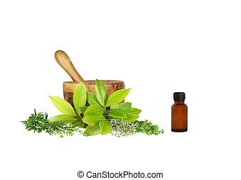 Fresh Herbs - Fresh herbs of rosemary, golden thyme, bay...