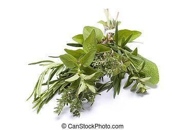 Fresh herbs - Fresh kitchen herbs including rosemary, ...
