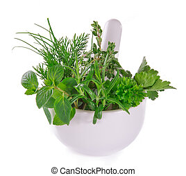 Fresh herbs in mortar on white background