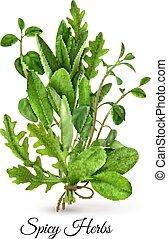Fresh Herbs Realistic
