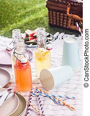 Fresh homemade fruit juice blend for a picnic