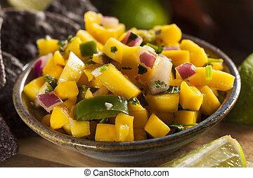 Fresh Homemade Mango Salsa