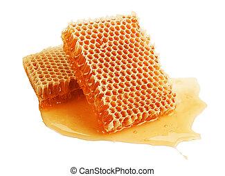 fresh golden honeycomb isolated on white background