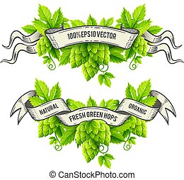 Fresh hop plants with green leaves and outline ribbons vector