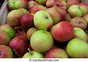 Fresh juicy apples in the box