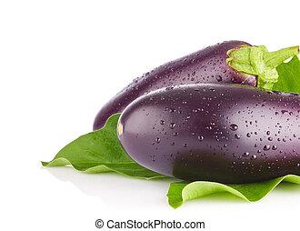 Fresh juicy organic eggplants with green leaves.