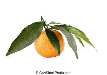 Fresh juicy tangerine on white  background