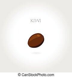 kiwi vector illustration