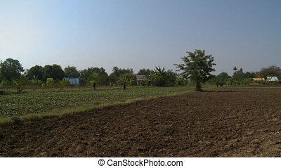 Fresh land and agricultural crops - A steady, long shot of...