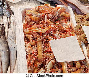 Fresh langoustines at market in italy
