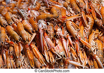 Fresh langoustines at the food market counter