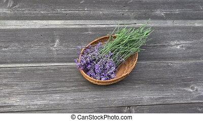 fresh lavender flowers in wicker basket on old wooden background