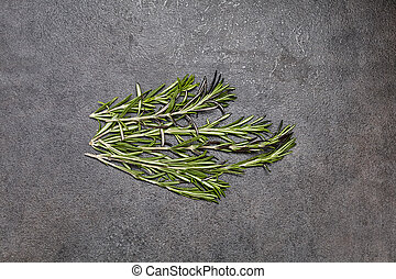 Fresh leaf rosemary on background. Close Up view.